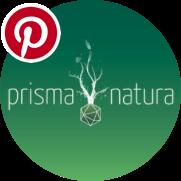 Logo Prisma Natura & Pinterest