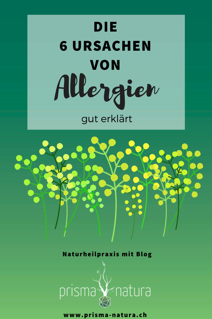 Titelbild Allergieursachen - Blogbeitrag von Prisma Natura