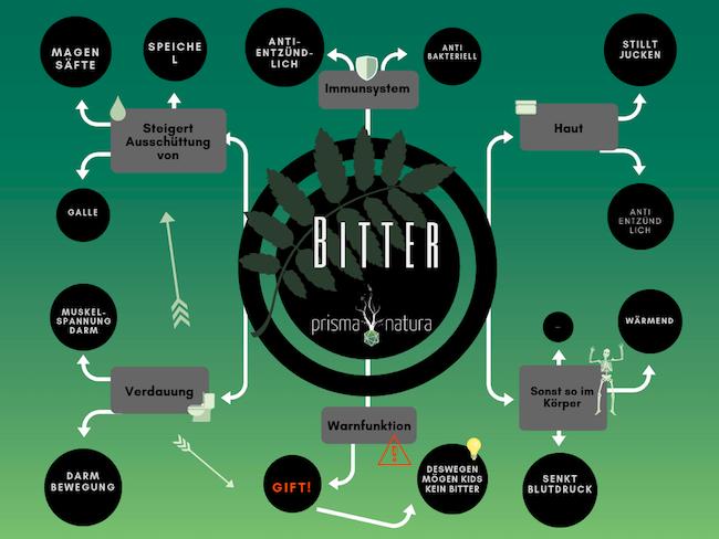 Infografik über Bitterstoff-Wirkungen