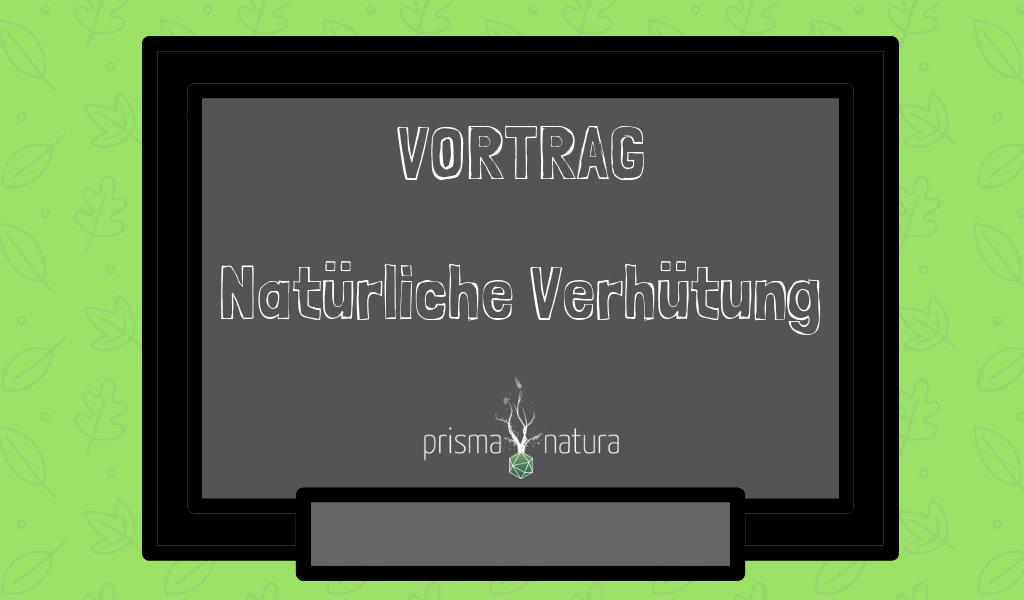 Titelbild Blogbeitrag Vortrag Natürliche Verhütung