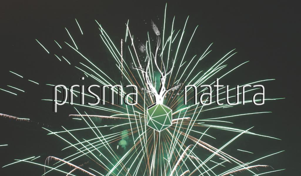 Feuerwerk Naturheilpraxis Prisma Natura, Baar